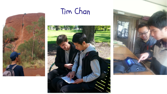 collage of photos featuring tim chan